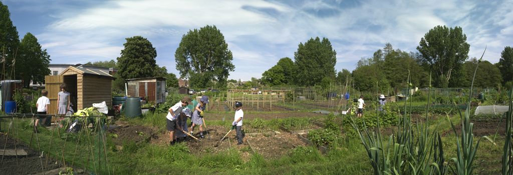 Photo of children digging in Frome allotments.