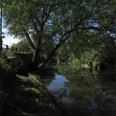 The River Corridor, Frome