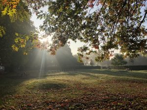 Victoria Park, Frome
