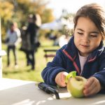 Everyone is welcome as Apple Day returns to Frome's Community Orchard