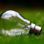Free Energy Training