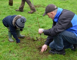 Photo of father and child planting a tree