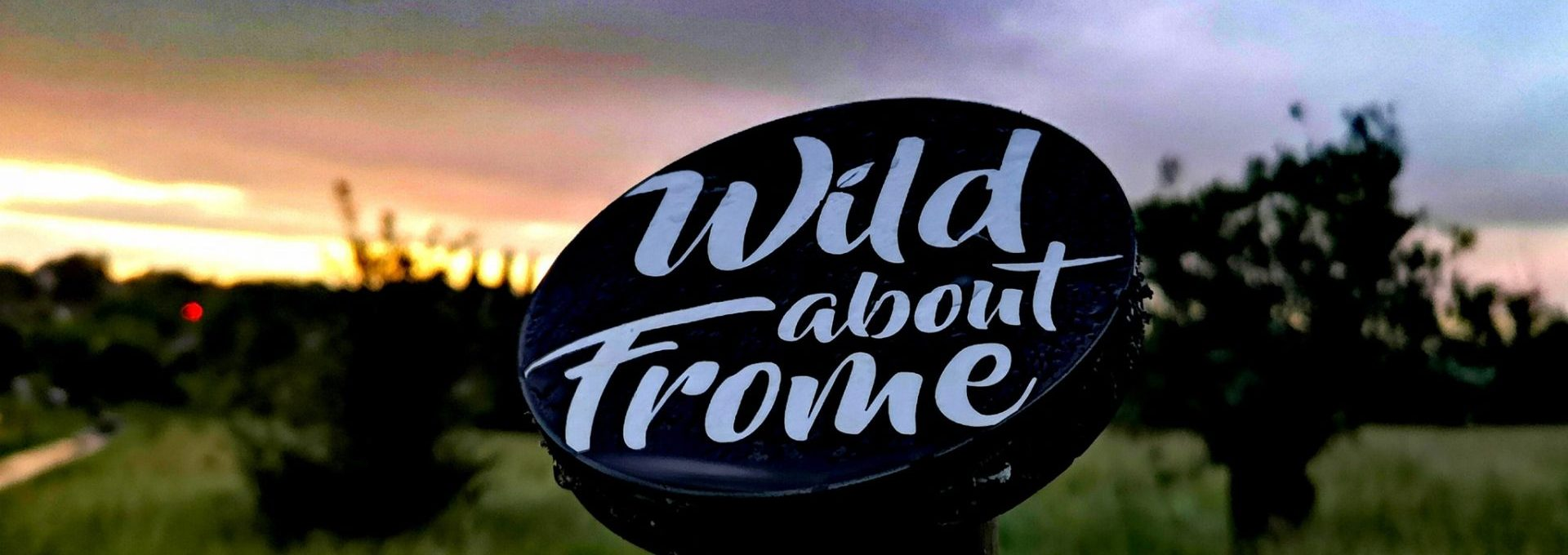 Wild about Frome post at sunset