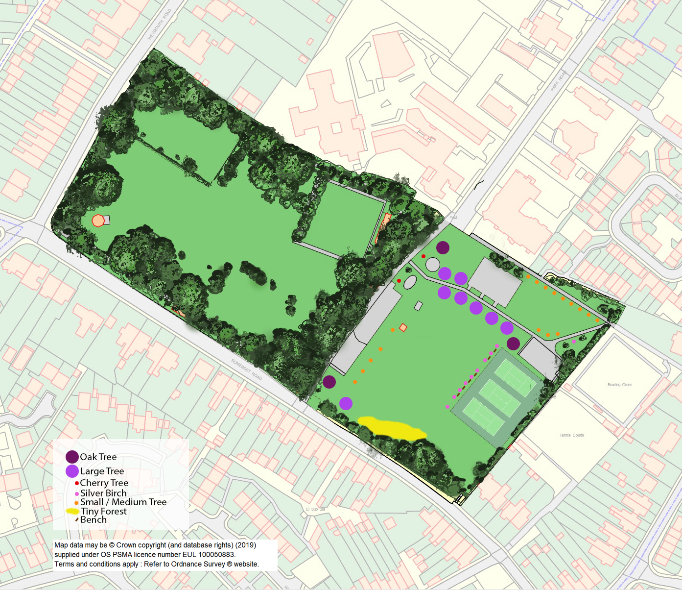 Map showing proposed tree planting at Mary Baily playing field.