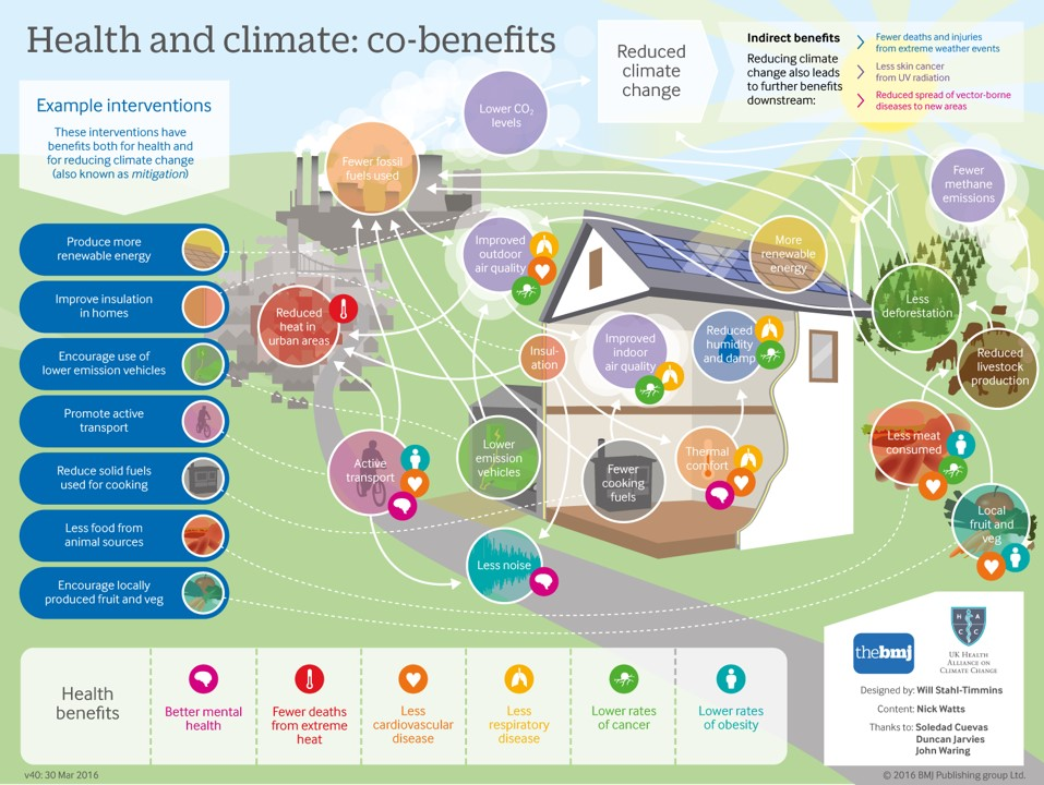 Graphic Image from the British Medical Journal detailing out examples of Health and climate co benefits