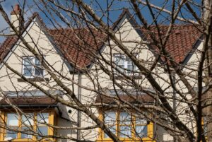Picture of roofs and houses behind tree branches