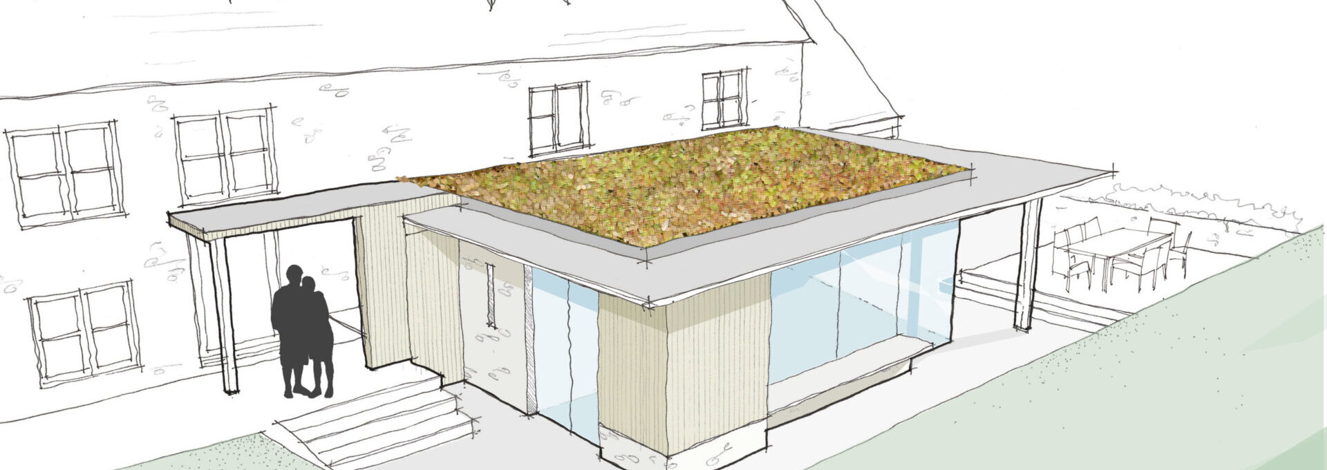 extension sketch with sedum roof