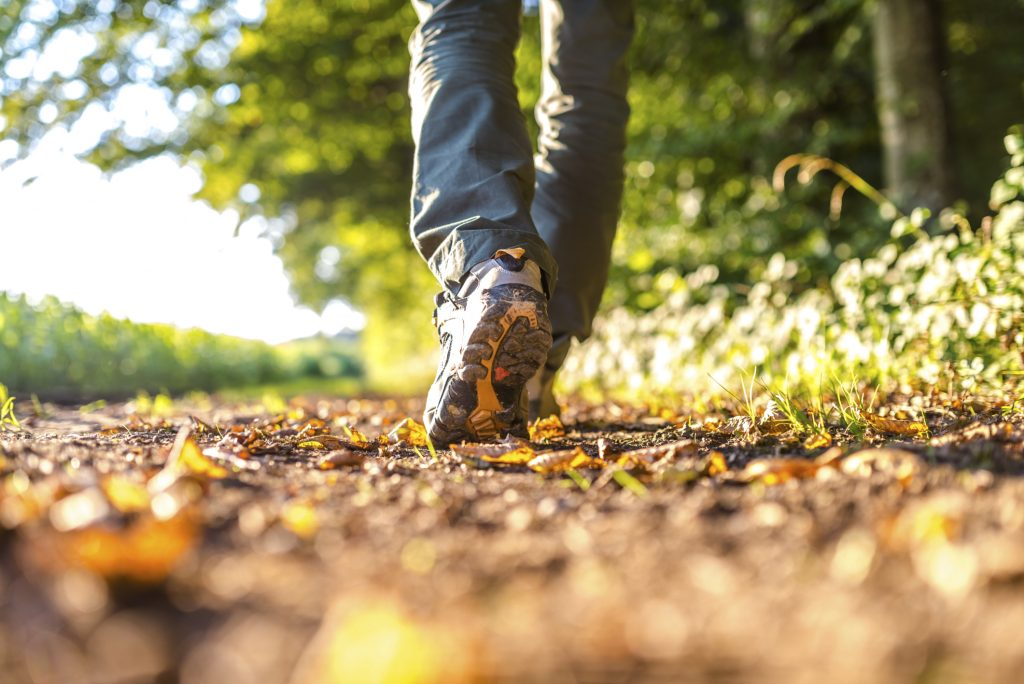 Person who can only be seen from foot to knee from behind walks on autumnal ground in walking shoes, with the sunlight shining in the background.